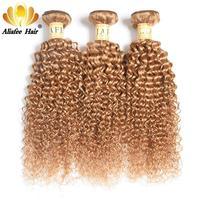 Ali Afee Hair Kinky Curly Brazilian Hair Weave Bundles Deals #27 Color 100% Human Hair Remy Hair
