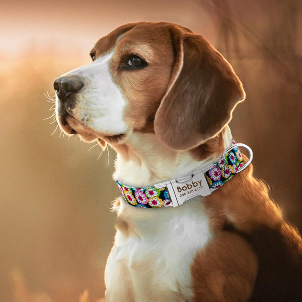 Collar de perro de Nylon personalizado con placa de identificación grabada 15