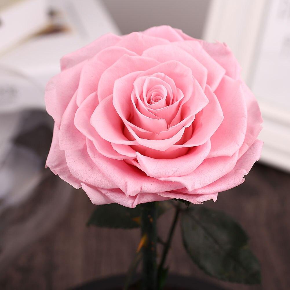 Floral Decor Preserved Fresh Flowers Glitter Fresh Flowers Pinkblue