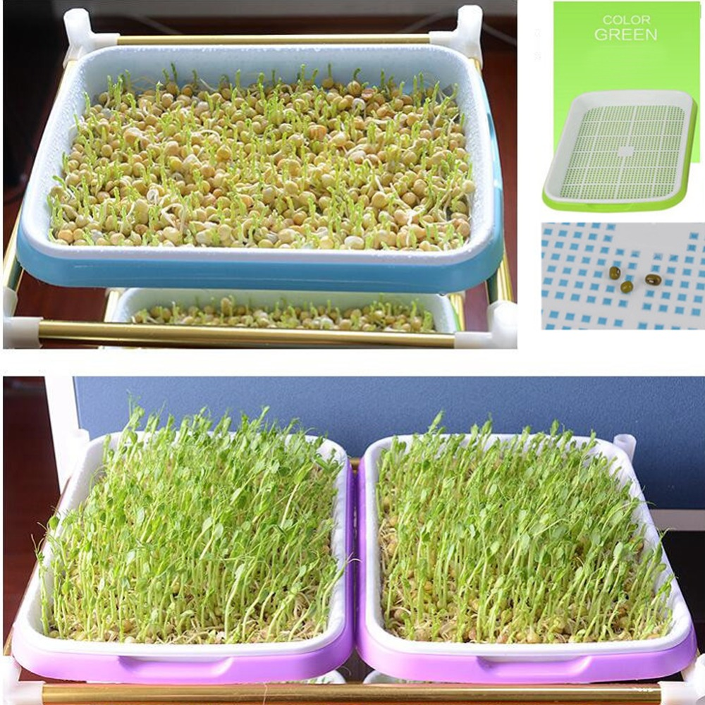 Image 5 - Hydroponics Seedling Tray Double Layer Sprout Plate Hydroponics  System To Grow Nursery Pots Tray Vegetable Seedling Pot 3 SetsNursery  Pots