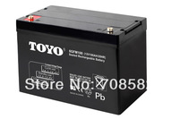 10pcs TOYO battery 12V100AH for Electric vehicles/storage/UPS/back up system and 4pcs 12VDC TO 230VAC 4000W inverter