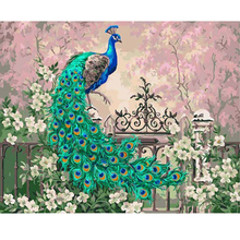 Wall Art 1 Pieces Picture Modern Home Decorative Animals Peacock DIY Oil Painting By Numbers Kits Coloring Paint Frameless