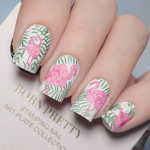 Image 4 - BORN PRETTY Summer Fruit Nail Art Stamping Template tropical Pattern Rectangle Image Plate Stamping Polish Needed