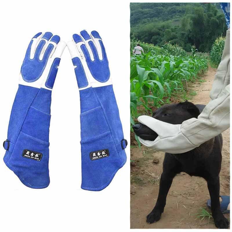Épaississement Anti-morsure gants de sécurité formation tactique Animal alimentation pour chat Animal de compagnie chien morsure anti-rayures gants de protection