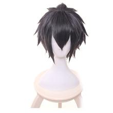 купить FF15 FFXV Final Fantasy Noctis Lucis Caelum Full Lace Costume short wig Gray Cosplay Wig Hair + Wig Cap дешево