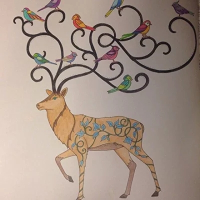 Enchanted Forest Colouring Book Secret Garden Style Relaxation Arts Endless Imagination