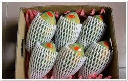 Gratis verzending 30x10cmThicken Fruit schuim white EPE Foam mesh mouw netto fruit schuim mouw netto bloem mouw netto verpakking materiaal
