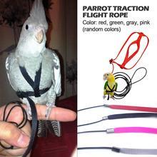 Поводок для попугая и поводок Летающий против укуса Тяговый канат обучение птиц на открытом воздухе переноска для алых попугаев