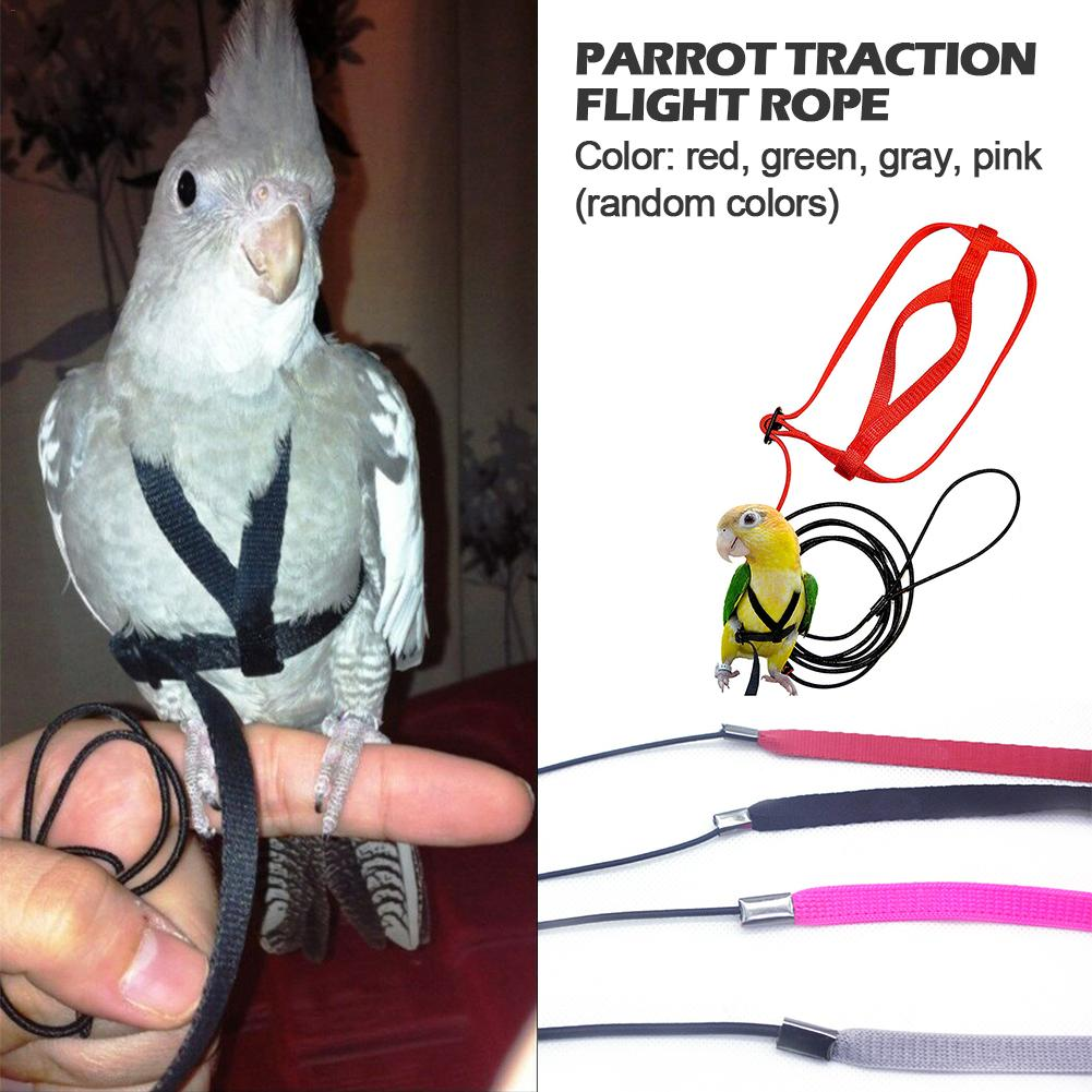 Parrot Harness And Leash Flying Anti-bite Traction Rope Bird Training Outdoor Carrying For Scarlet Macaw Parrots Birds