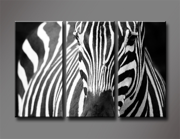 Compare Prices on Zebra Living Room Set  Online Shopping Buy Low   Black and White Zebra  3 Panels Set HD Canvas Print Painting Artwork  Wall. Black And White Wall Pictures For Living Room. Home Design Ideas