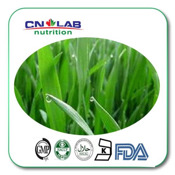 Hot selling 100% Pure & Natual Organic Young Barley Grass Powder 1kg Free Shipping 500g organic barley grass powder barley leaves powder good for men and women