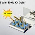 1 pcs Dental for Ultrasonic Scaler Tips NEW DENTAL ENDO TIP COMPATIBLE WITH SATELEC DTE ULTRASONIC SCALER for SIRONA