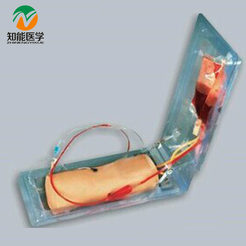 BIX-HS10 Advanced Elbow Venipuncture Training Model MQ020 картридж canon cl 441xl цветной для pixma mg2140 mg3140 400 страниц