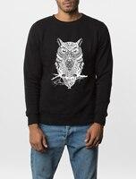 2016 New Autumn Winter Fashion Owl Animal Sweatshirt Hoodies Hip Hop Style Harajuku Sport Gym Brand