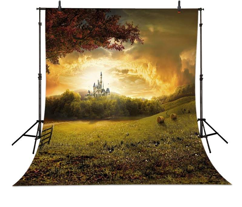 Dusk On The Outskirts Of The Castle backdrop Vinyl cloth Computer printed newborns Backgrounds  сайдинг vinyl on 3660х230 мм серо голубой