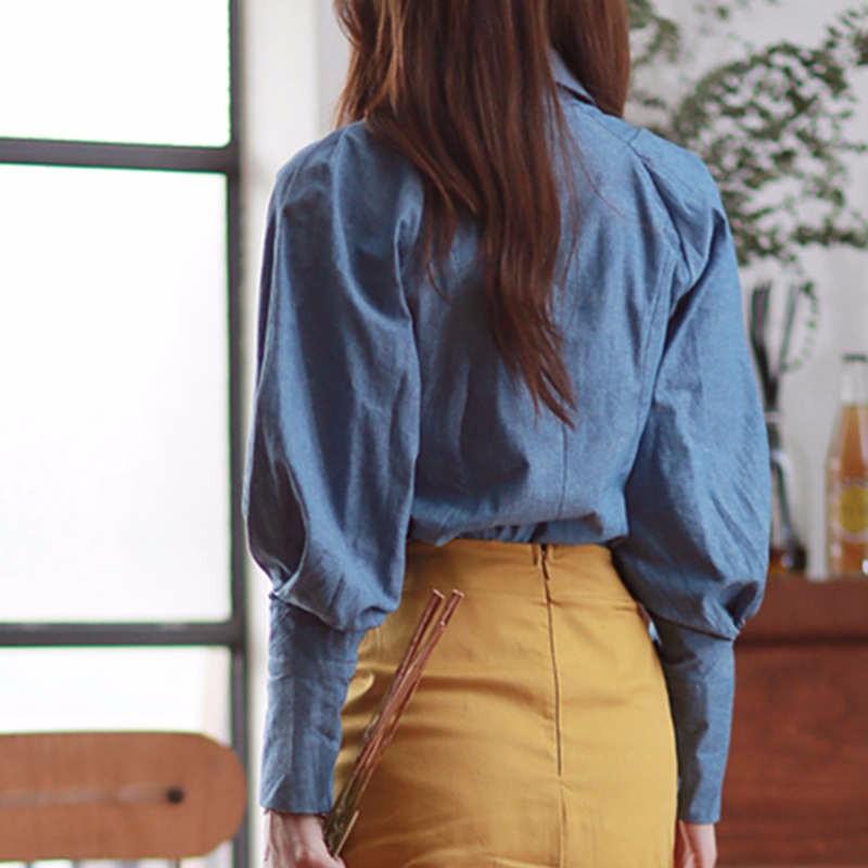 blue Lantern Sleeve fall blouse 4