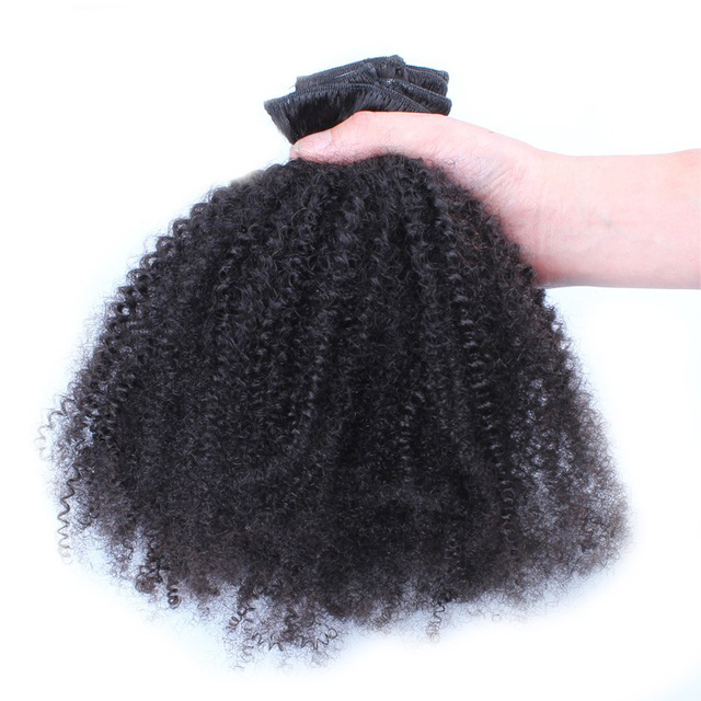 Clip In Human Hair Extensions 4b 4c Afro Kinky Curly Clip Ins