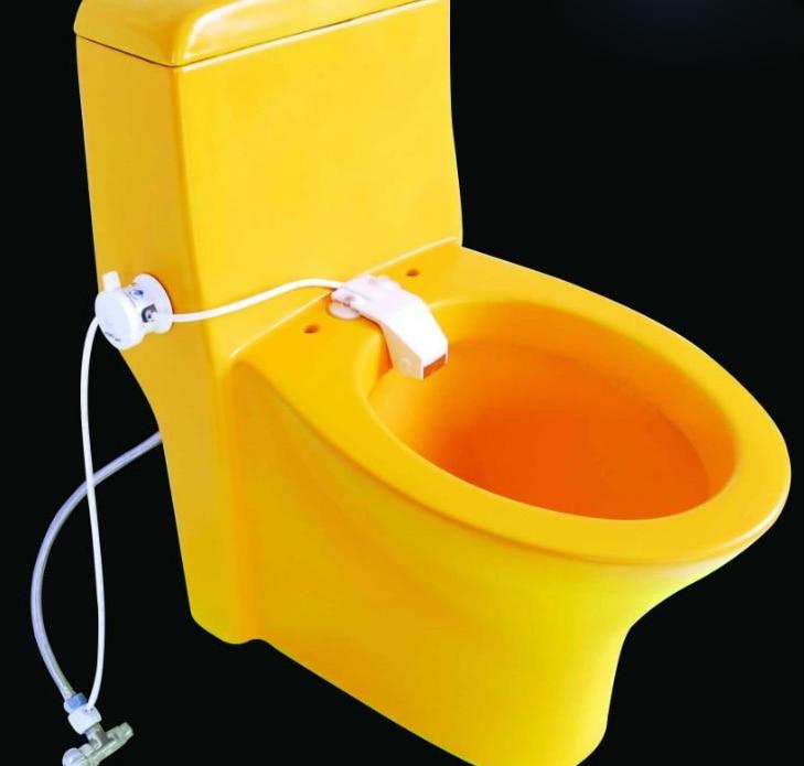 Astonishing Japanese Toilet Seat Australia Contemporary Best  Buy Japanese Toilet   Mobroi com. Japanese Toilet Seat Australia. Home Design Ideas
