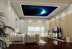 u-5015 famous plants hanging stretch ceiling film with ceiling lamp
