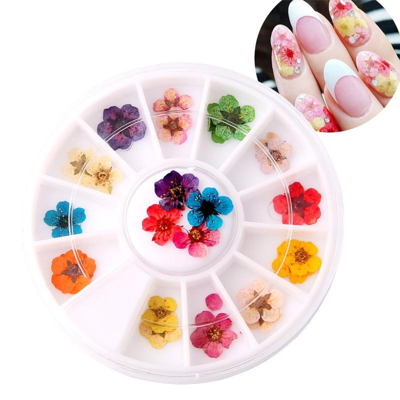 3d Dry Flower Nail Art Decorations 12 Color Natural Flower Petals 3d Nails Accessoires Ornaments Manicure Pedicure Beauty Gift