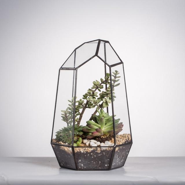 Modern Style Indoor Tabletop Planter For Succulents Bonsai Succulent Plant  Pot Glass Geometric Terrarium Flower Pot