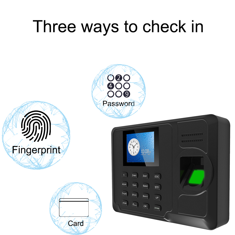Fingerprint Biometric Time Attendance System TCP/IP Fingerprint USB Clock Recorder Office Employee Device Attendance Machine-in Fingerprint Recognition Device from Security & Protection    2
