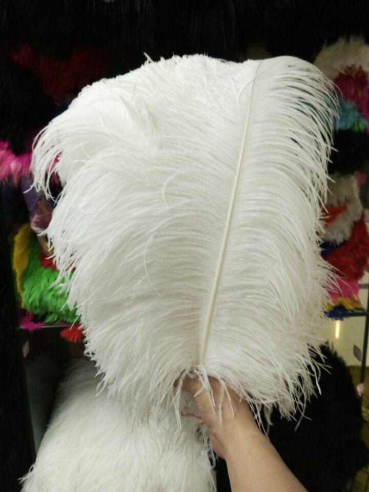 En gros parfait 200 pièces haute qualité plumes d'autruche naturelles 18-20 pouces/45-50 cm Décoratif bricolage blanc