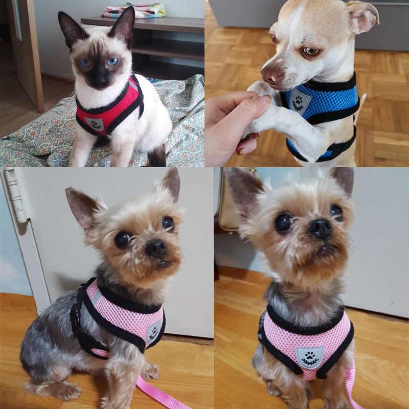 通気性メッシュ小型犬ペットハーネスとリーシュセット子犬猫ベストハーネス首輪チワワパグブルドッグ猫 arnes ペロ