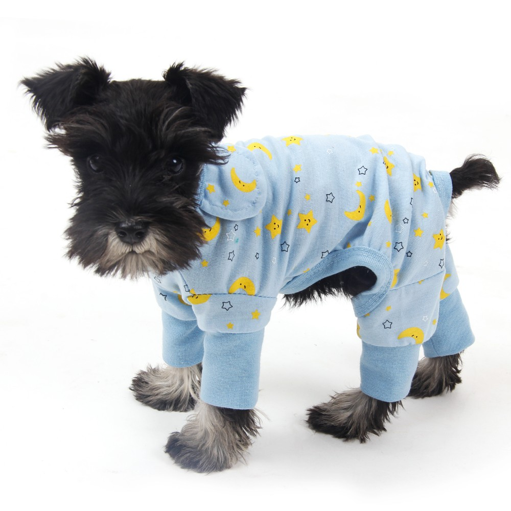 Clothes for dogs online