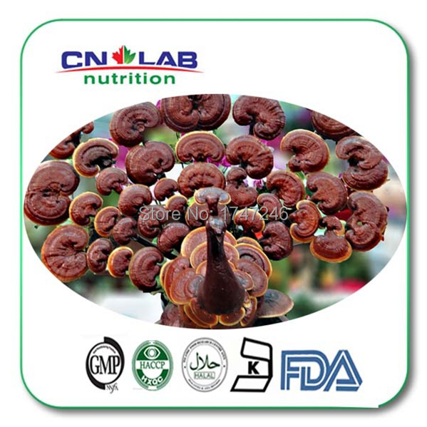 300g Reishi Extract Powder,Ganoderma lucidum Free shipping By International EMS free shipping organic ganoderma lucidum extract powder
