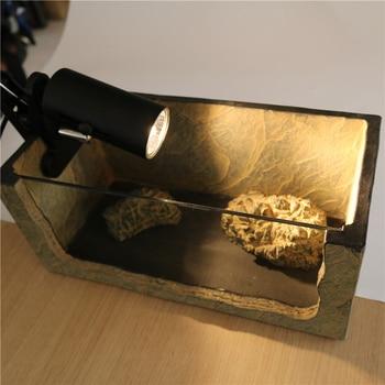 UVA+UVB 3.0 Reptile Lamp Kit with Clip-on Ceramic Lights Holder Turtle Basking UV Heating Lamp Set Tortoises Lizards Lighting 1