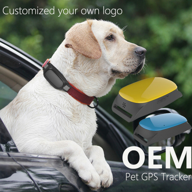 waterproof Smart Cats dogs GPS Tracking device Real Time Waterproof Pet Dog collars gps tracker free platform service