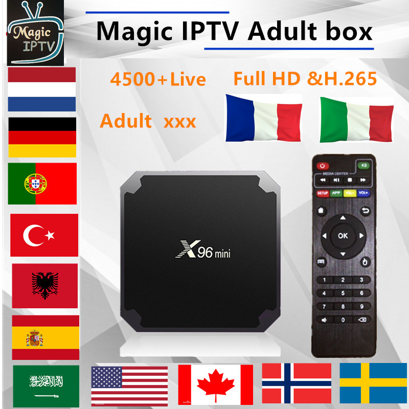 X96Mini Android TV- 1 years  IPTV subscription france Italy Arabic Belgium spain Sweden Nordic Portugal Canada USA Brazil M3U