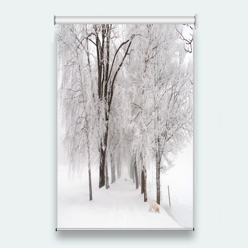Volets roulants pour fenêtre 3d volets roulants hiver neige scène pour salon maison translucide stores occultants