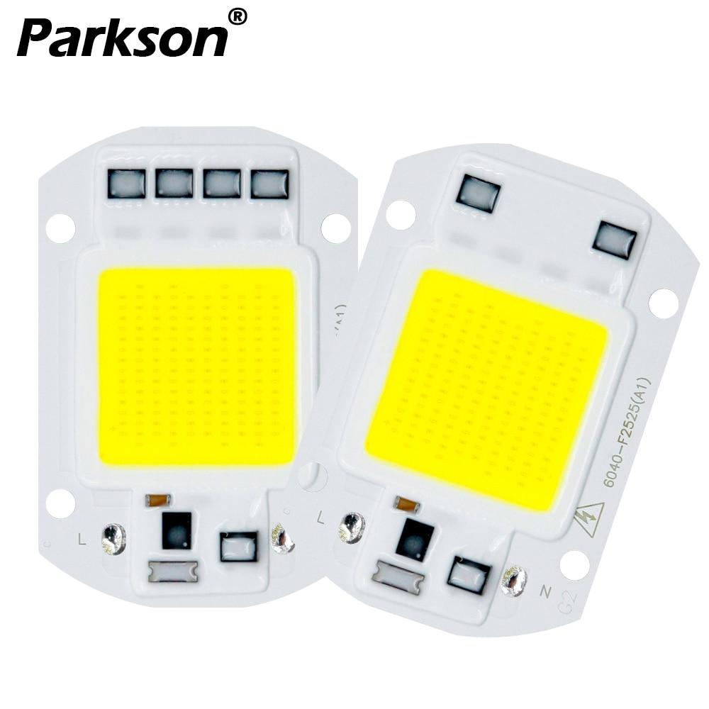 COB LED Lamp Real 10W 20W 30W 50W AC 220V IP65 Smart IC DIY Chip LED Bulb Flood Light Spotlight For Projectors Driver Light