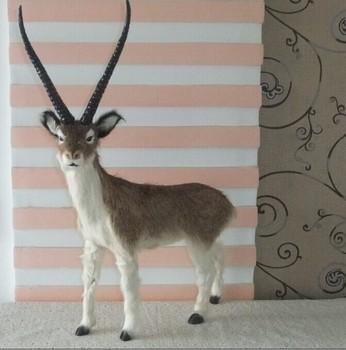 55x40cm Simulation animal Antelope ,gazelle model toy,polyethylene&furs Resin sheep model handicraft,props,decoration gift A804