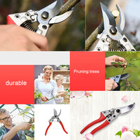 Best Quality Professional Garden Grafting Scissors Tool Fruit Tree Flower Pruning Shears Pruners Gardening DIY Secateurs