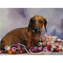 YIKEE 5d diamond painting dogs round drill 5D DIY diamond embroidery full package animal     y873 5d full round
