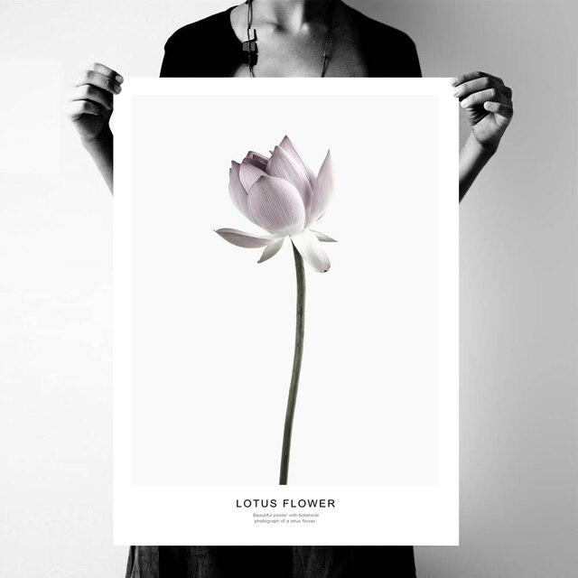 Nordic Lotus Magnolia Flowers Poster Print Nursery Wall Art Picture