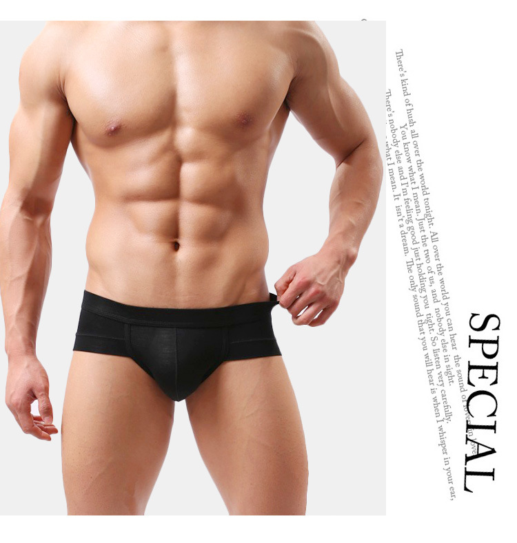 Men Briefs Underwear Men's Sexy Brief Underpants Modal Comfortable Mens Briefs Underwear Shorts Cueca Male Panties(China)