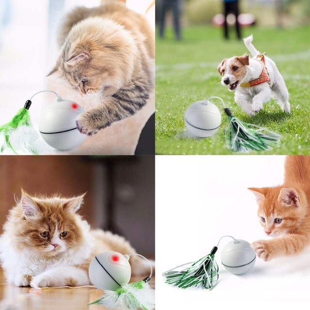 Rechargeable Rolling Ball for Cats 1