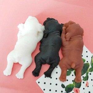 Image 3 - חמוד מצחיק צעצועי Antistress שר פיי כלב גור לילדים, ילדים, תינוק, פעוט, למבוגרים אוורור חינוכיים צעצוע מתנה