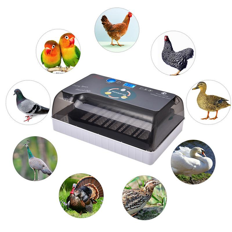 Digital Egg incubator automatic Intelligent Egg incubators Hatcher Large 12 eggs incubators For Chicken Duck Poultry Quail Eggs-in Feeding & Watering Supplies from Home & Garden    1