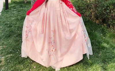 Hanfu Ancient Chinese Costume Dress Koi Traditionl Chinese Clothing for Women Fairy Design Style Daily Festival Outfits Dance 4