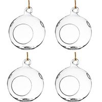 Pack of 4 Hanging Glass Plant Terrariums Glass Hanging Planters Hanging Air Plant Terrariums, 5 Diameter