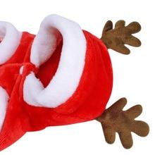 Christmas  Santa Costume