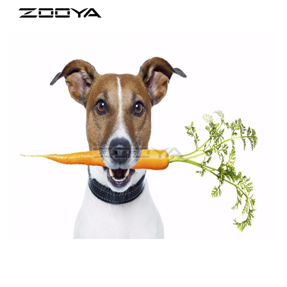 ZOOYA Sale Diamond Embroidery DIY Diamond Painting Mosaic Pictures Rhinestone Painting Animal Radish Dog Head Gifts R1985