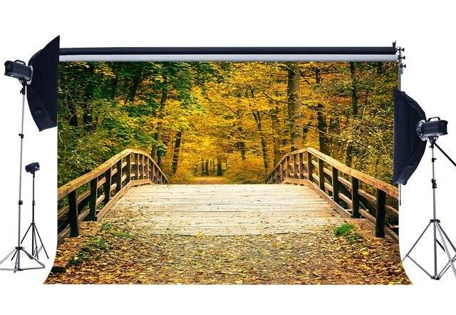 Осенний фон джунгли фоны потрепанное деревянное Мост Золотые листья природа Свадьба церемония фотографии фон