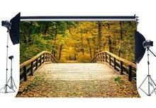 ฤดูใบไม้ร่วงฉากหลังป่าฉากหลัง Shabby สะพานไม้ Golden ใบธรรมชาติงานแต่งงานถ่ายภาพพื้นหลัง