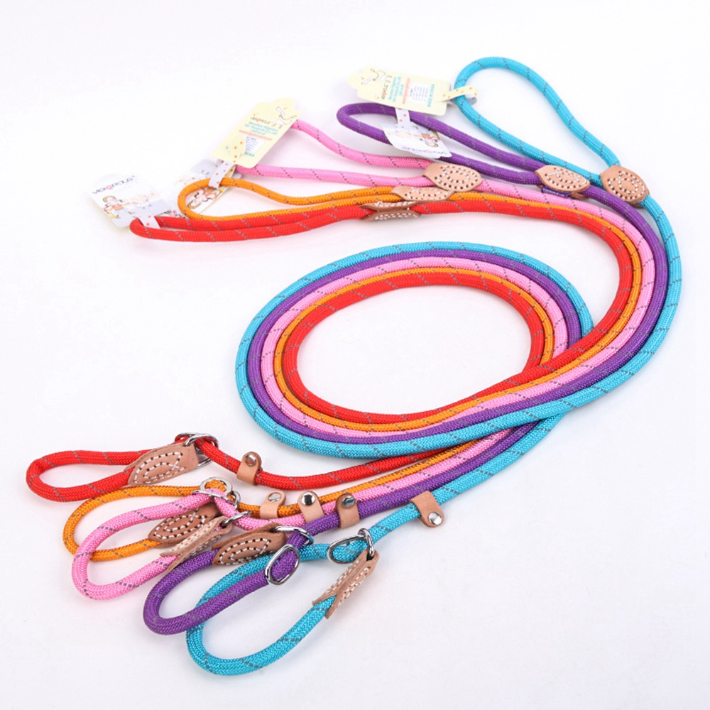 Pet Products Dog Leash Nylon Reflective Puppy Dog Leash Rope Cat Chihuahua Pet Leash And Collar Set Cat Dog Leashes Lead Harness (26)
